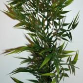 Guirlande Bambou
