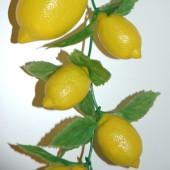 Guirlande citron